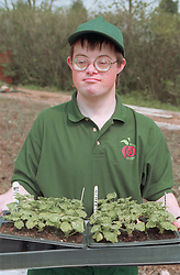 Young man with Downs Syndrome carrying seed tray at work on community allotment project,
