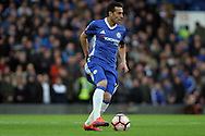 Pedro of Chelsea in action. The Emirates FA Cup 4th round match, Chelsea v Brentford at Stamford Bridge in London on Saturday 28th January 2017.<br /> pic by Steffan Bowen, Andrew Orchard sports photography.