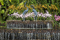 Crane Fountain at Singapore Botanic Garden -  a major visitor attraction boasting an array of botanical & horticultural offerings with a rich plant collection of worldwide significance. Enhancing these resources are recreational facilities, educational displays and events for visitors surrounded by nature. The garden was first set up by Stamford Raffles, who was the founder of Singapore as well as being a naturalist at Fort Canning.  The original venue closed in 1829 and moved to the present site in 1859. In 2015 the Gardens received inscription as UNESCO World Heritage Site.