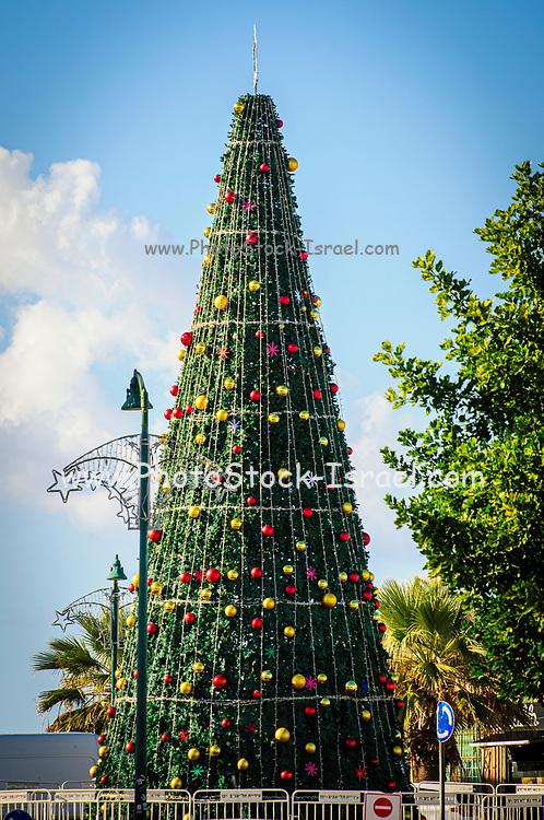 Large Christmas Tree in Jaffa, Israel