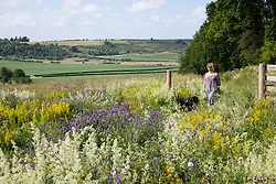Sarah Raven in the wild flower meadow at Magdalen Hill Down