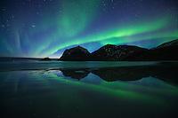 Spring northern lights reflection on Vik beach, Vestvågøy, Lofoten Islands, Norway