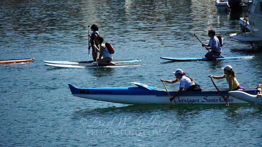 Santa Cruz Harbor ~ Outriggers ~ 6971