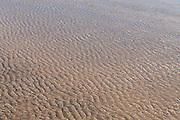 Low Tide Ripples