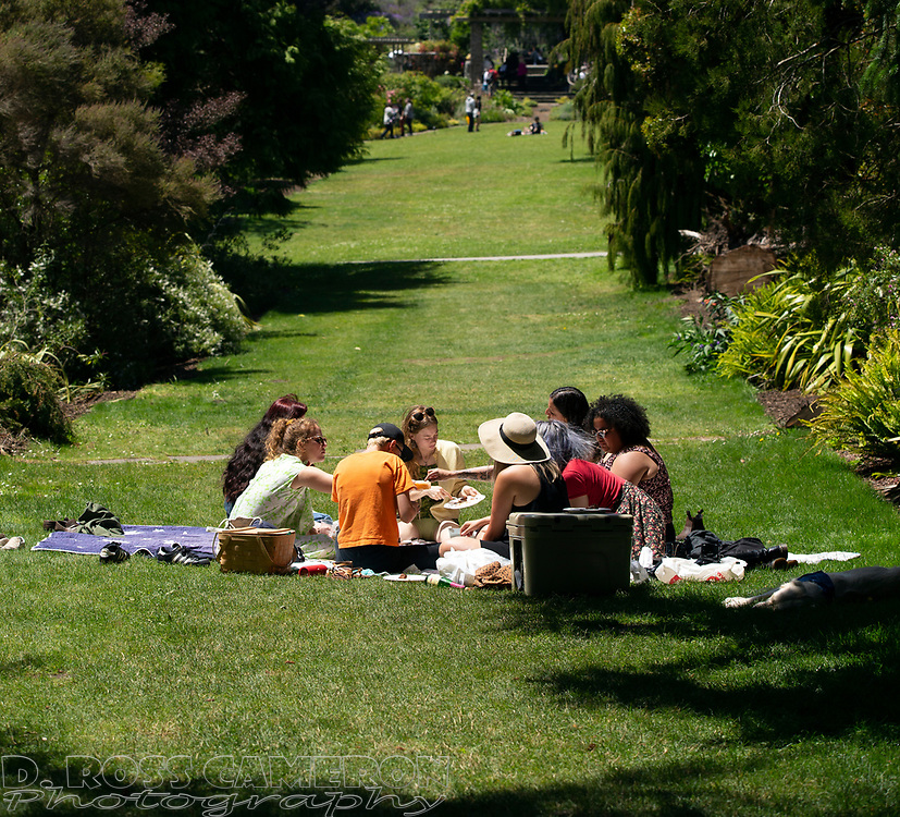 Unidentified women have a picnic at the fifth annual Flower Piano exhibition at the San Francisco Botanical Garden in Golden Gate Park, Friday, July 19, 2019 in San Francisco. The exhibition continues through Monday. (Photo by D. Ross Cameron)