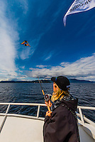 """A guide aboard the Un-Cruise ship """"Wilderness Explorer"""" uses the line from a fishing rod to fly a kite with a GoPro camera attaached to take aerial photos, Stephens Passage, off Admiralty Island, Inside Passage, southeast Alaska USA."""