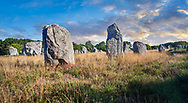 View of Carnac neolthic standing stones monaliths, Alignements de Kelescan, a pre-Celtic site of standing stomes used from 4500 to 2000 BC,<br /> <br /> Carnac is famous as the site of more than 10,000 Neolithic standing stones, also known as menhirs. The stones were hewn from local rock and erected by the pre-Celtic people of Brittany. The Carnac stones were erected during the Neolithic period which lasted from around 4500 BC until 2000 BC. One interpretation of the site is that successive generations visited the site to erect a stone in honour of their ancestors. '<br /> <br /> Visit our PREHISTORIC PLACES PHOTO COLLECTIONS for more  photos to download or buy as prints https://funkystock.photoshelter.com/gallery-collection/Prehistoric-Neolithic-Sites-Art-Artefacts-Pictures-Photos/C0000tfxw63zrUT4