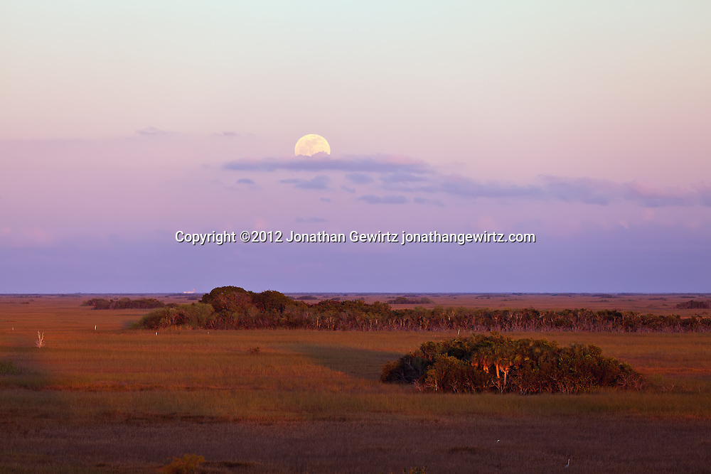 The full moon rises above the eastern horizon, opposite the setting sun, as seen from the Shark Valley observation tower in Everglades National Park, Florida on January 8, 2012. WATERMARKS WILL NOT APPEAR ON PRINTS OR LICENSED IMAGES.<br /> Licensing: https://tandemstock.com/assets/12831851