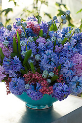 Hyacinth table arrangement in turquoise vase