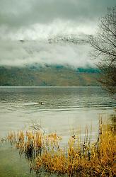 Ben Lomond and Loch Lomond shrouded in early morning  mist.<br /> <br /> (c) Andrew Wilson | Edinburgh Elite media