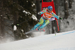 Slovenia's PERKO Rok during the Men's Downhill of the Audi FIS Ski World Cup 2009/10 on Saturday December the 18th, 2009 in Val Gardena  - Groeden, Italy. The Audi FIS Ski World Cup 2009/10 is taking place in South Tyrol until Monday the 21st of December 2009. (Photo by Pierre Teyssot  / Sportida)