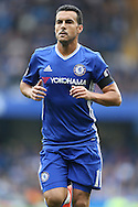 Pedro of Chelsea looking on. Premier league match, Chelsea v Leicester city at Stamford Bridge in London on Saturday 15th October 2016.<br /> pic by John Patrick Fletcher, Andrew Orchard sports photography.