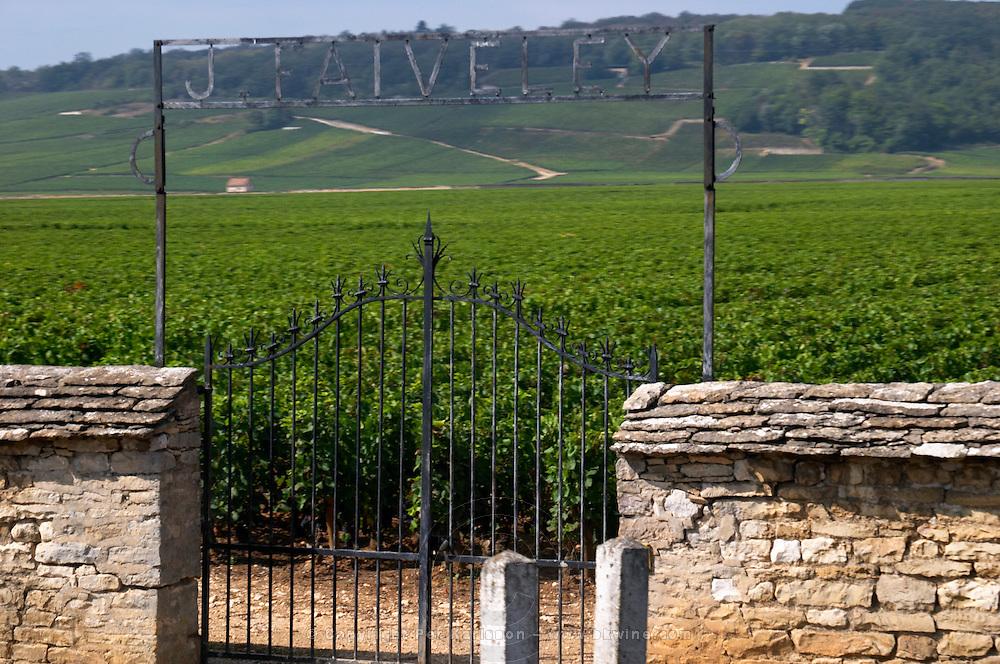 vineyard gate marked j faiveley clos de vougeot cote de nuits burgundy france