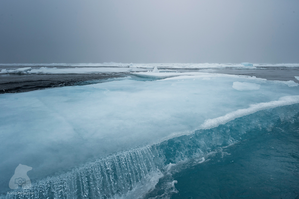 Melting ice in the Arctic Ocean, north of Spitsbergen, Svalbard
