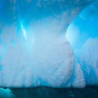 Sunlight shines through a beautifully sculpted iceberg in Port Charcot near Booth Island, Antarctica.