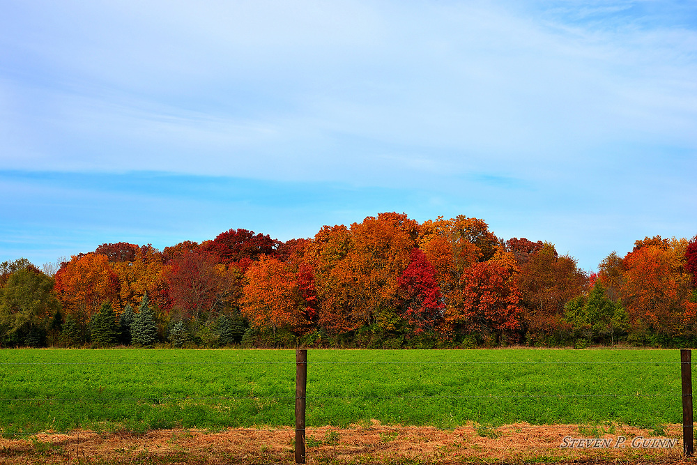 """I captured this landscape, along with """"Lakeside In Autumn"""", in Demotte, Indiana on October 31st, 2018. I was most drawn to the vibrant autumn colors of the foliage in the background. The way the altostratus cloud formation and cirrus cloud formations are intertwined with the blue sky also stood out to me, too. I love the transition of the green soybean field to the warm, red and orange foliage colors and then the cool, blue color of the sky, as well as how vivid all of the colors are. I also wanted to capture the detail of the foliage, especially at the treetops to give the image depth. The shadows in the trees give great contrast to the lighter colors throughout the image as well. <br /> <br /> Printed on Hahnemühle German Etching paper. Limited to 100 productions per size.<br /> <br /> Framed prints are available in 18"""" x 12"""", 24"""" x 16"""", 30"""" x 20"""", 36"""" x 24"""", 45"""" x 30"""", and 60"""" x 40"""" sizes."""