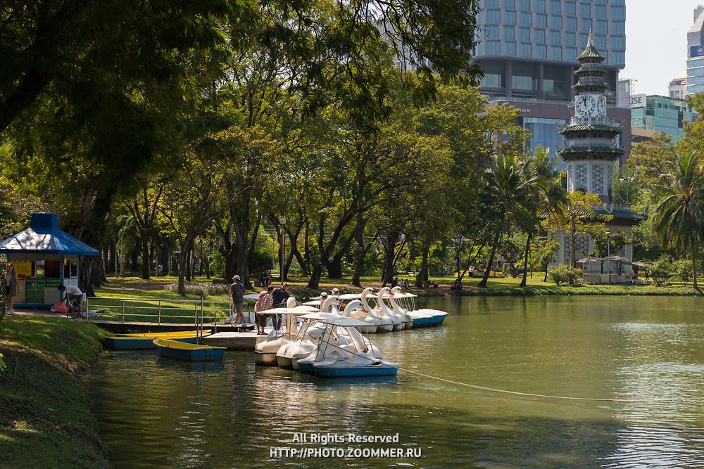 Swan pedal boats rental in Lumpini park, Bangkok, Thailand