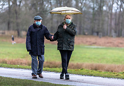 © Licensed to London News Pictures. 20/01/2021. London, UK. Newly vaccinated 89 year old Jeremy Marshall from New Malden, Surrey and his carer Caroline Smith brave the wind and the rain in Richmond Park South West London as Storm Christoph batters the UK with storm force winds and heavy rain. Today, the Met office issued yellow weather warnings for flooding for large parts of the country. Photo credit: Alex Lentati/LNP