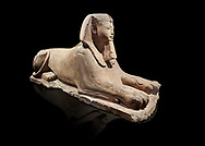 Ancient Egyptian Sphinx statue, sandstone, New Kingdom, early 19th Dynasty (1292-1250), Karnak, Temple of Amon. Egyptian Museum, Turin. black background<br /> <br /> The Phatoah and queen could be represented by Sphinx statues and by associating human faces with the body of a lion the Egyptians combined the strength of the animal that was connected to the sun god with human inetelligence. In this guardian rols sphinxes were generally placed facing each other on either side of temple gates, processional ways or dooways inside the temple. . Drovetti Collection. C1408 .<br /> <br /> If you prefer to buy from our ALAMY PHOTO LIBRARY  Collection visit : https://www.alamy.com/portfolio/paul-williams-funkystock/ancient-egyptian-art-artefacts.html  . Type -   Turin   - into the LOWER SEARCH WITHIN GALLERY box. Refine search by adding background colour, subject etc<br /> <br /> Visit our ANCIENT WORLD PHOTO COLLECTIONS for more photos to download or buy as wall art prints https://funkystock.photoshelter.com/gallery-collection/Ancient-World-Art-Antiquities-Historic-Sites-Pictures-Images-of/C00006u26yqSkDOM