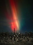 Red, creamy yellow and green aurora during geomagnetic storm on the night of October 27-28, 2001, Upper Susitna Valley, Alaska.