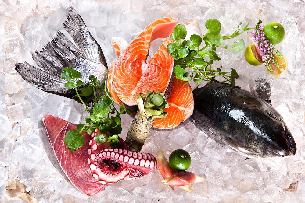 Food photography. Kaizen Sushi Bar, Montreal. Chef Keitaro. 2012.