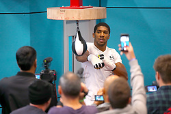Anthony Joshua during a media workout at The English Institute of Sport, Sheffield