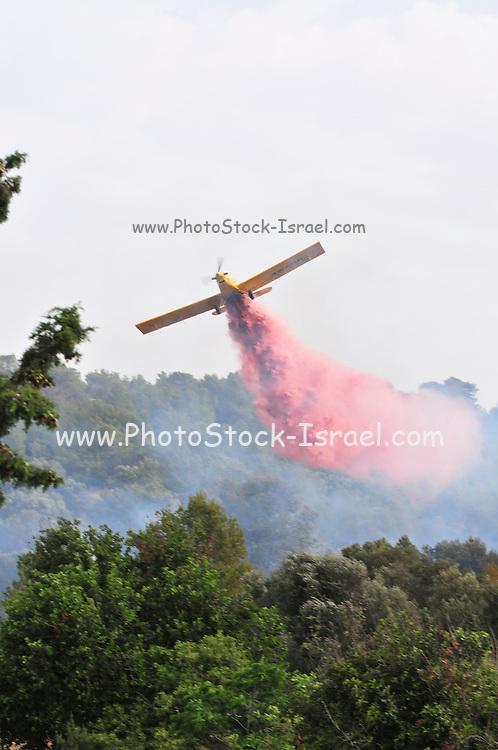Israel, Haifa Carmel Mountain Forest, Aircraft dropping fire retardant on a wildfire