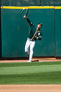 Oakland Athletics left fielder Matt Joyce (23) chases down a fly ball against the San Francisco Giants at Oakland Coliseum in Oakland, California, on March 25, 2018. (Stan Olszewski/Special to S.F. Examiner)