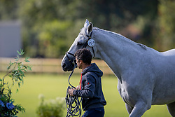 Marquez Galobardes Alberto, ESP, Ucello Massuere<br /> European Championship Riesenbeck 2021<br /> © Hippo Foto - Dirk Caremans<br />  31/08/2021