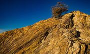 Javelina Rocks Overlook on the Cactus Forest Drive, Rincon Mountain District, Saguaro National Park, Arizona