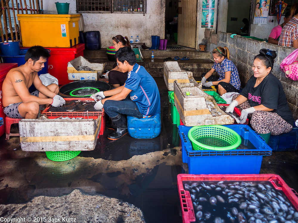 """11 JUNE 2015 - MAHACHAI, SAMUT SAKHON, THAILAND: Burmese migrant workers at the Samut Sakhon shrimp market in Mahachai clean squid. Labor activists say there are about 200,000 migrant workers from Myanmar (Burma) employed in the fishing and seafood industry in Mahachai, a fishing port about an hour southwest of Bangkok. Since 2014, Thailand has been a Tier 3 country on the US Department of State Trafficking in Persons Report (TIPS). Tier 3 is the worst ranking, being a Tier 3 country on the list can lead to sanctions. Tier 3 countries are """"Countries whose governments do not fully comply with the minimum standards and are not making significant efforts to do so."""" After being placed on the Tier 3 list, the Thai government cracked down on human trafficking and has taken steps to improve its ranking on the list. The 2015 TIPS report should be released in about two weeks. Thailand is hoping that its efforts will get it removed from Tier 3 status and promoted to Tier 2 status.        PHOTO BY JACK KURTZ"""