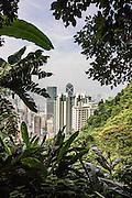 Walking paths down from Victoria Peak, Hong Kong