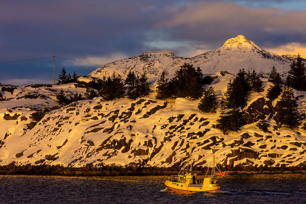 A fishing boat sails near the snowy coastline in winter of Austvagoya Island, near Henningsvaer, Lofoten Islands, Norway.