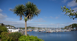 Clyde Cruising Club's Scottish Series 2019<br /> 24th-27th May, Tarbert, Loch Fyne, Scotland<br /> <br /> Day  1 - Tarbert Harbour,  Social<br /> Credit: Marc Turner / CCC