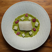 Salmon at Lucia in Carmel Valley, Calif.