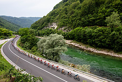 Peloton near Zagorje  during 1st Stage of 26th Tour of Slovenia 2019 cycling race between Ljubljana and Rogaska Slatina (171 km), on June 19, 2019 in  Slovenia. Photo by Vid Ponikvar / Sportida