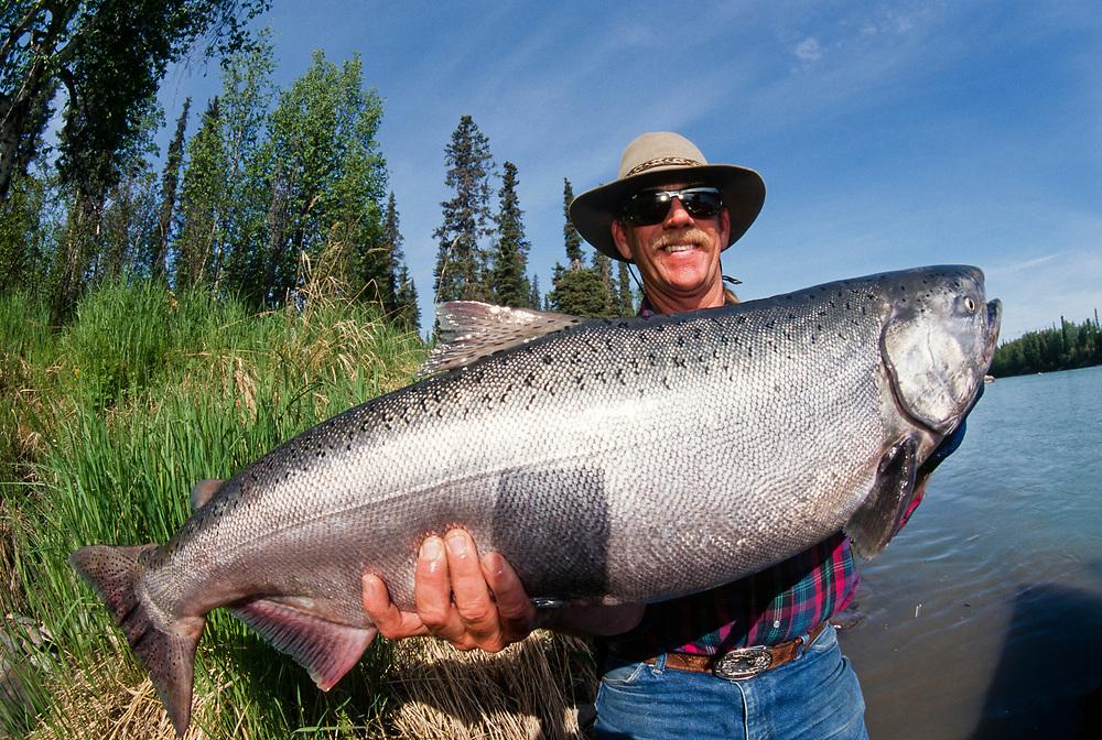 Alaska. Fisherman with King Salmon catch, Kenai River. MR