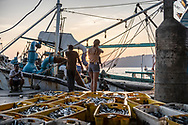 Kota Kinabalu, Sabah, Malaysia - August 10, 2019: A young woman backpacking in the Malaysian state of Sabah, on the island of Borneo, explores at sunset local fishing vessels offloading their catch in Kota Kinabalu at sunset.