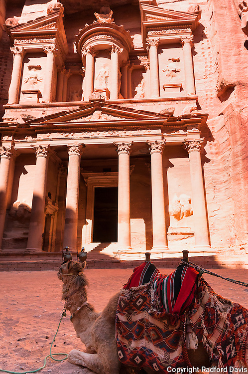 Camel waits in front of the Treasury Building, Petra, Jordan.