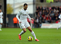 Sunday, 25 November 2012..Pictured: Itay Shechter of Swansea..Re: Barclays Premier League, Swansea City FC v Liverpool at the Liberty Stadium, south Wales.