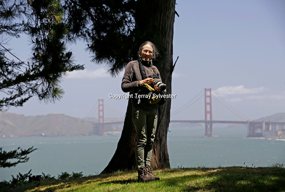 Wildlife observer Janet Kessler, who specializes in photos of urban coyotes near her home in San Francisco, poses for a portrait in Golden Gate Park Golf Course on Monday, May 11, 2015, in San Francisco, California.