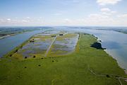 """Nederland, Zuid-Holland, Tiengemeten, 12-06-2009; overzicht van het eiland in het Haringvliet, naar het Oosten, richting Haringvlietbrug. Oorspronkelijk gebruikt voor de akkerbouw maar inmiddels 'teruggegeven aan de natuur', de dijken zijn deels doorgestoken, de laatste boer is in 2006 vertrokken. Huidig gebruik onder andere zorgboerderij en kan er gekampeerd worden. De 'nieuwe natuur' vormt onderdeel van de Ecologische Hoofdstructuur. Oorspronkelijk was het eilandje eigendom van AMEV (Fortis Investments) - binnen de dijken, de buitendijkse slikken waren van de Vereniging Natuurmonumenten..The island Tiengemeten in the Haringvliet, originally owned - within the dikes - by AMEV (Fortis Investments), and Natuurmonumenten (Society for conservation of nature). The island was used for agriculture but has now """"been given back to nature"""", large parts have been flooded and the isle is part of the National Ecological Network. The last farmer left in 2006. Current use, among other, care farms and camping..Swart collectie, luchtfoto (25 procent toeslag); Swart Collection, aerial photo (additional fee required).foto Siebe Swart / photo Siebe Swart"""