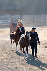 © Licensed to London News Pictures. 26/07/2018. Llanelwedd, Powys, UK. Horses, riders and handlers arrive for the morning events in the Main Ring on the last day of the Royal Welsh Agricultural Show. The Royal Welsh Agricultural Show is hailed as the largest & most prestigious event of its kind in Europe. In excess of 200,000 visitors are expected this week over the four day show period. The first ever show was at Aberystwyth in 1904 and attracted 442 livestock entries. Photo credit: Graham M. Lawrence/LNP
