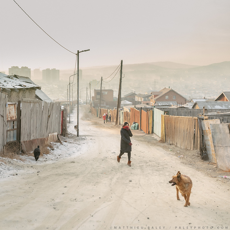 Dogs. Air pollution and city views from the Dari Ekh ger district neighborhood.
