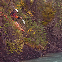 Play boat kayaker Jeff Germaine (MR) launches from steep, forested slope into Kananaskis River, Kananskis Provincial Park, near Banff and Calgary, Alberta, Canada