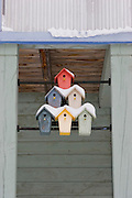 Wide shot of snow-covered birdhouses