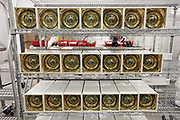 Photo by Mara Lavitt<br /> New Haven, CT<br /> November 17, 2017<br /> Photography: ©Mara Lavitt<br /> <br /> The final stages of building a neutrino detector at Yale University's Wright Lab. Housings awaiting placement.