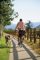A young woman rides a cruiser bike with her dogs in the town of Jackson, Wyoming.