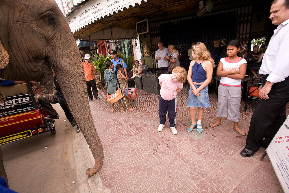 PHNOM PENH, CAMBODIA - OCT 26:  An elephant is seen to the delight of tourists October 26, 2007 in Phnom Penh, Cambodia. (Photograph by David Paul Morris)