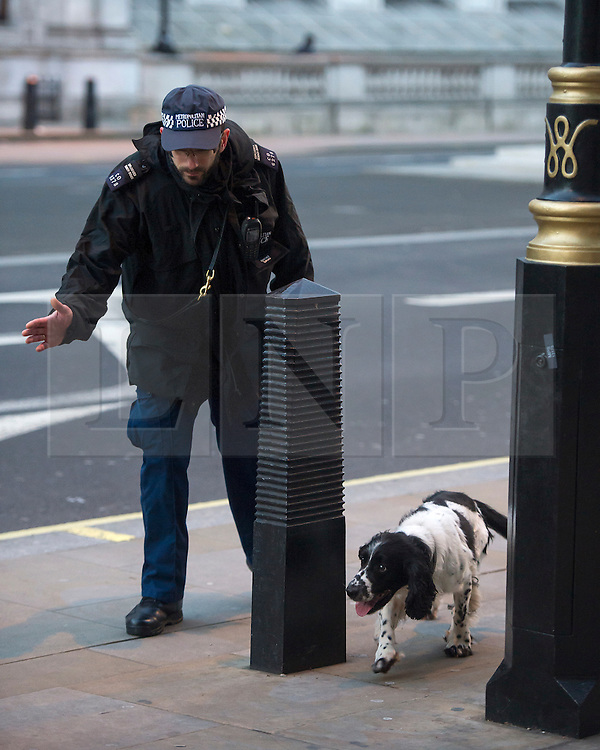© Licensed to London News Pictures. 31/12/2015. London, UK. Police sniffer dogs searching in Westminster, central London toady (Thurs) as security in the capital is heightened ahead of New Year celebrations this evening.  Photo credit: Ben Cawthra/LNP